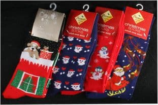 PREMIER AC04977  Adult Christmas Socks